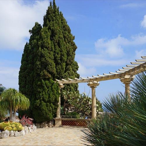 Vegetation in the Jardin Exotique of Monaco
