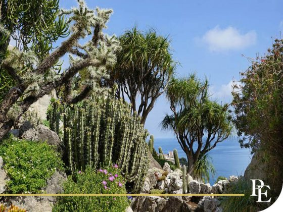 Jardin Exotique of Monaco